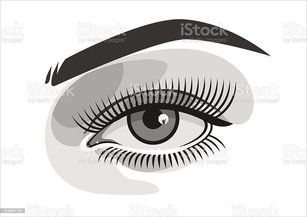 Realistic woman eye with makeup, graphics vector art illustration