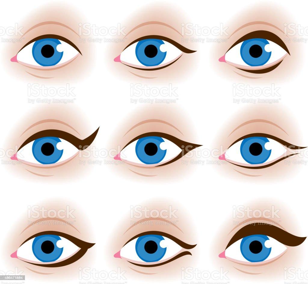 Realistic woman's eyes vector illustration vector art illustration
