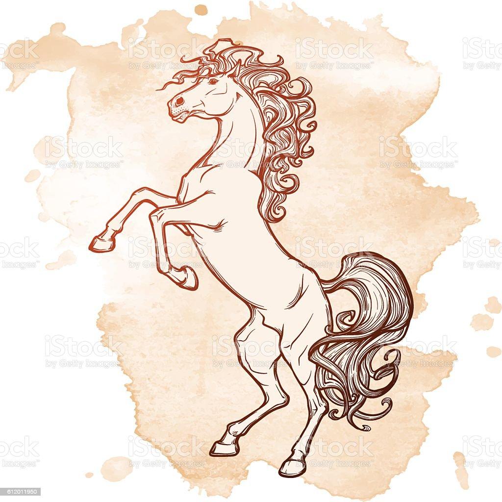 rearing horse black on grunge BG vector art illustration