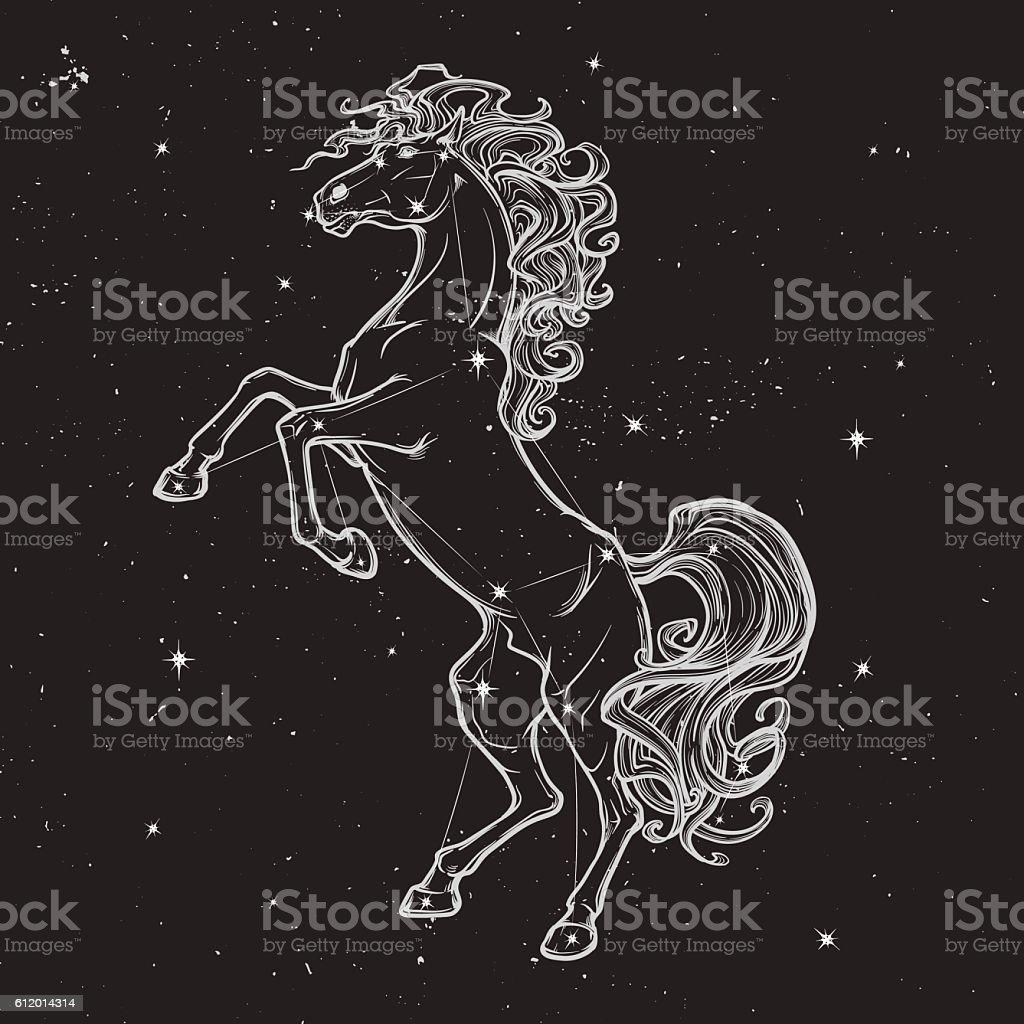 rearing horse black on nightsky BG vector art illustration