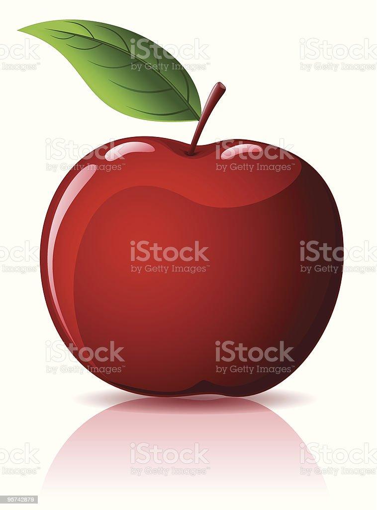 Red apple isolated on white vector art illustration
