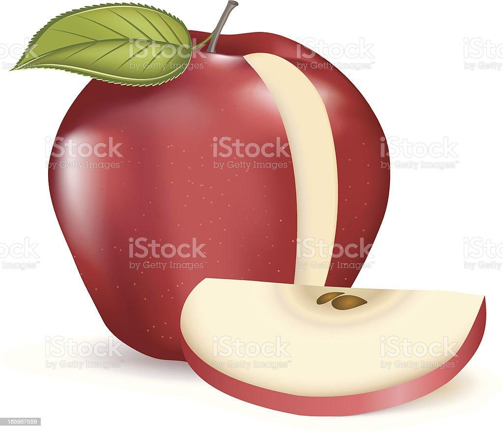 Red Apple Slice vector art illustration