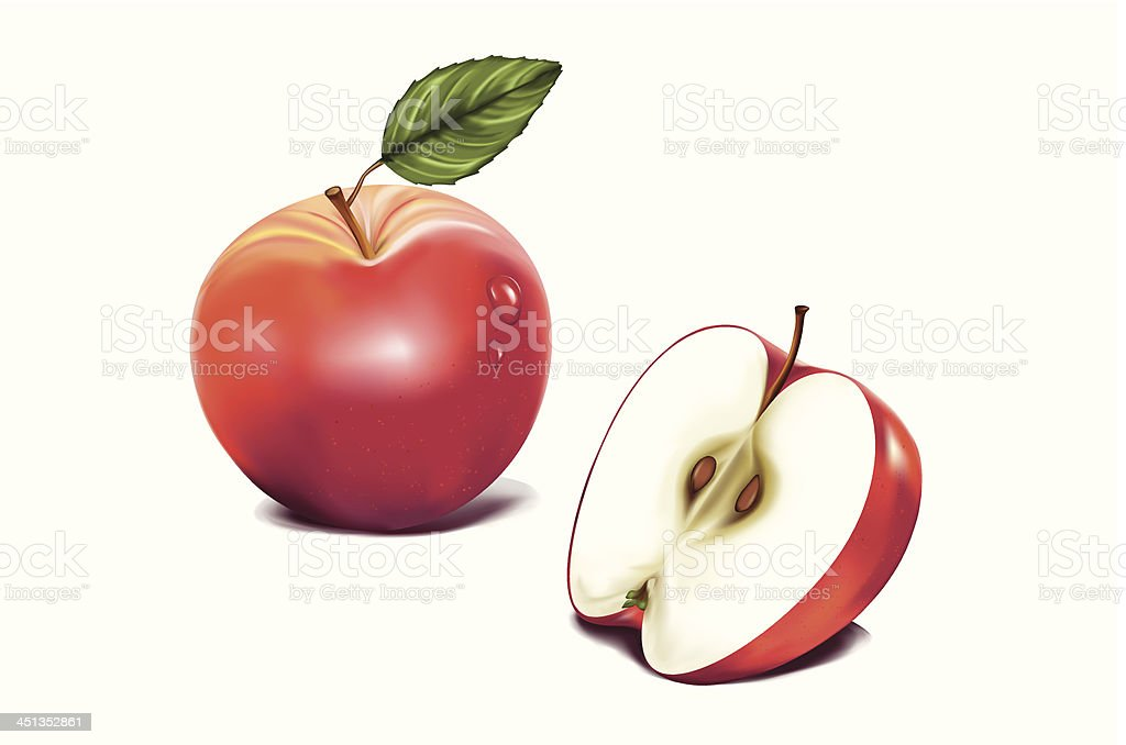 roter Apfel royalty-free stock vector art