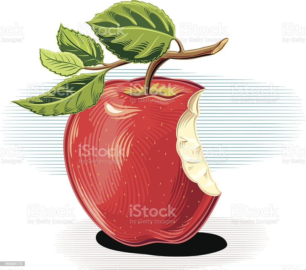 Red apple with bite vector art illustration