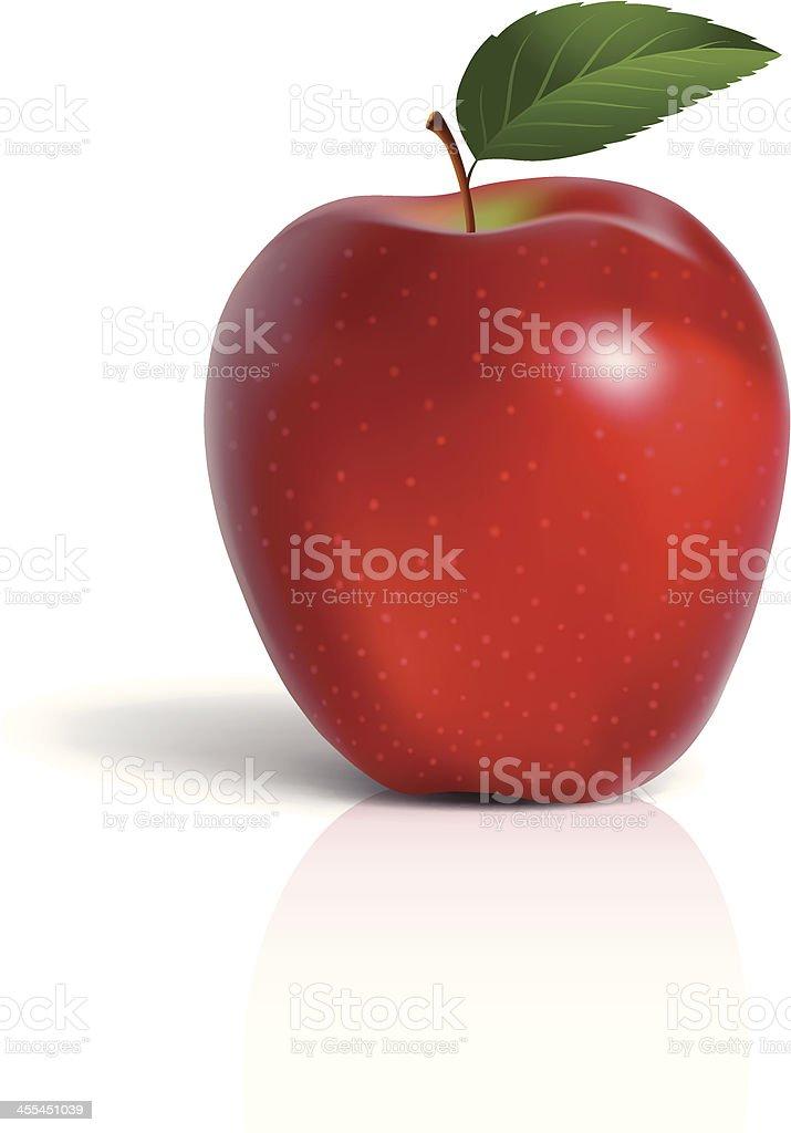 Red Apple with Leaf vector art illustration