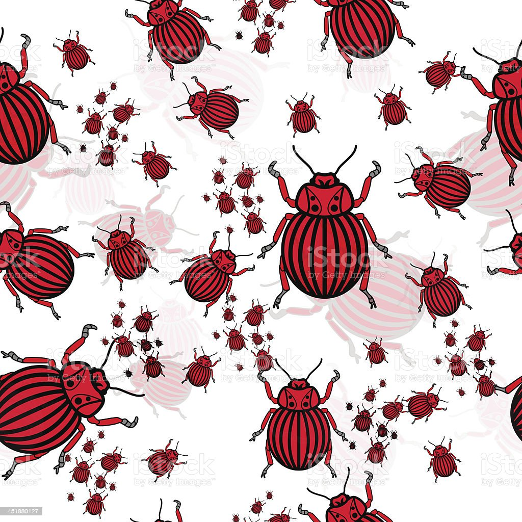 Red beetles royalty-free stock vector art