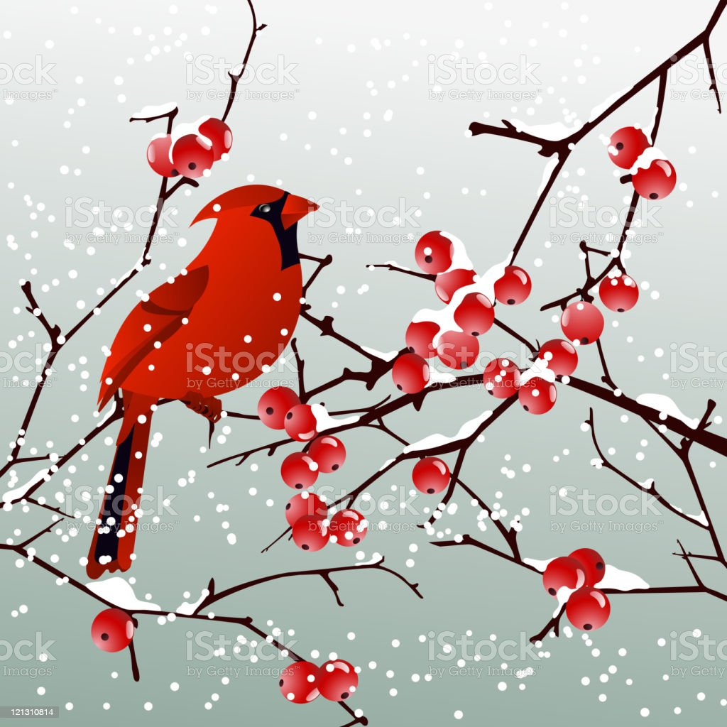 Red Cardinal with Winter Background vector art illustration