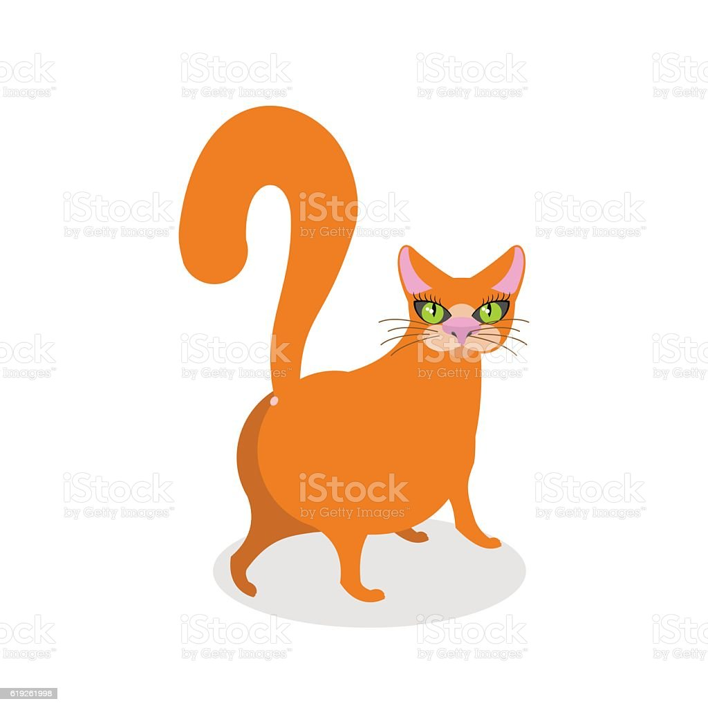 Red cat ass. Happy pet. Thick Animal back vector art illustration