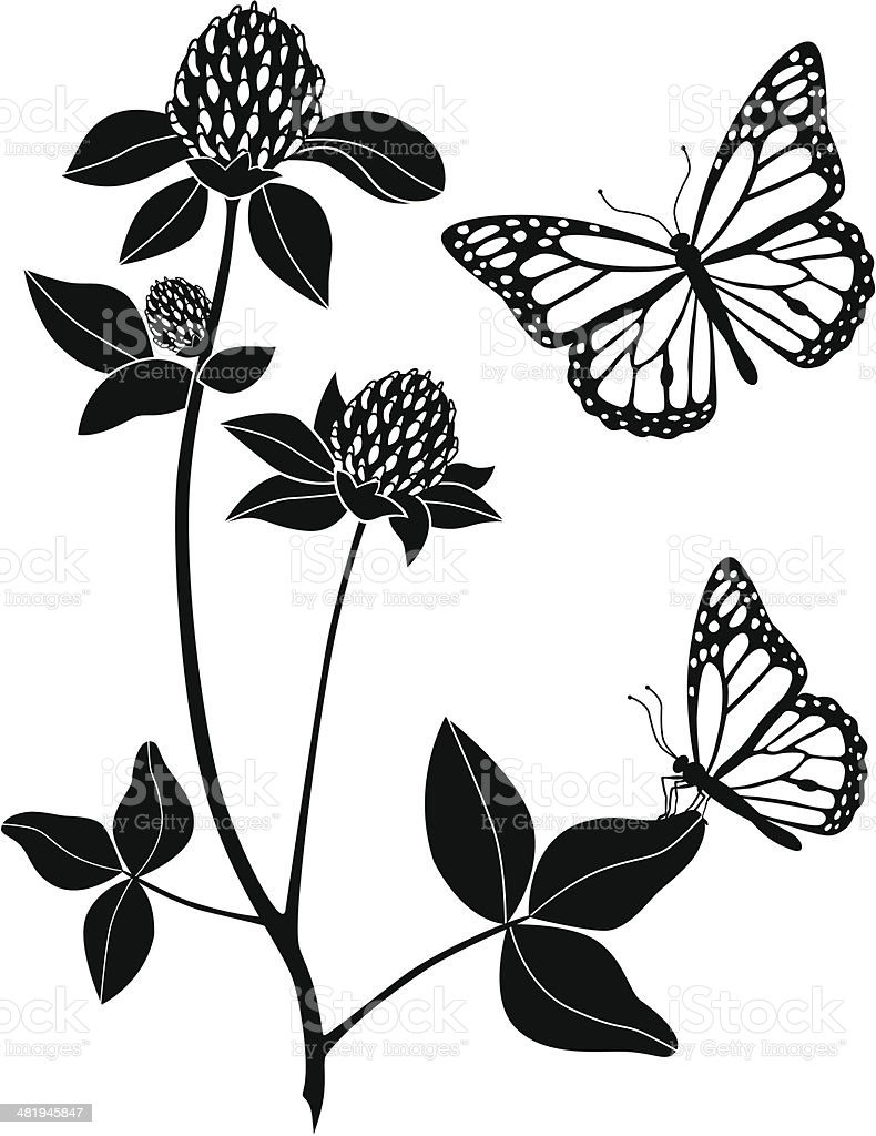 red clover and monarch butterflies vector art illustration