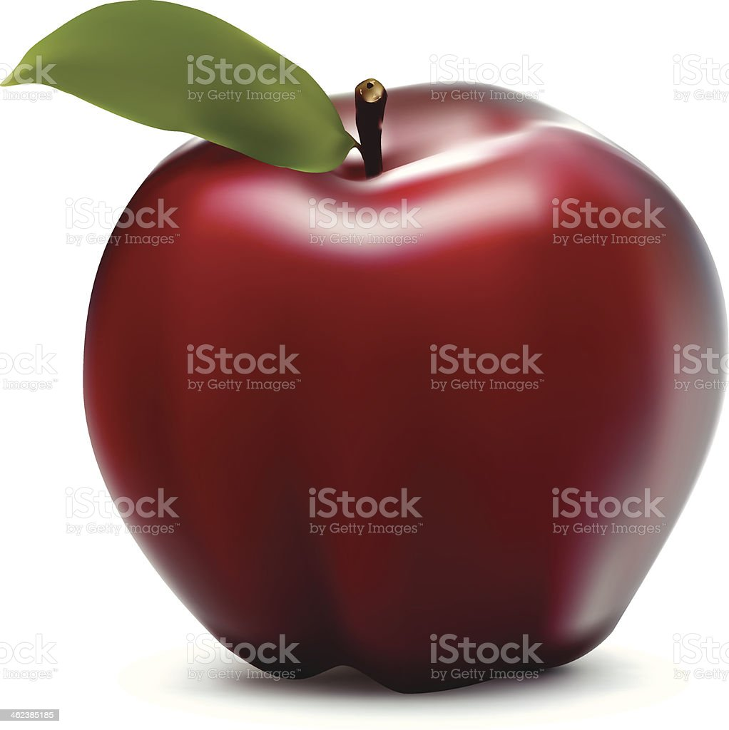 Red Delicious Apple vector art illustration