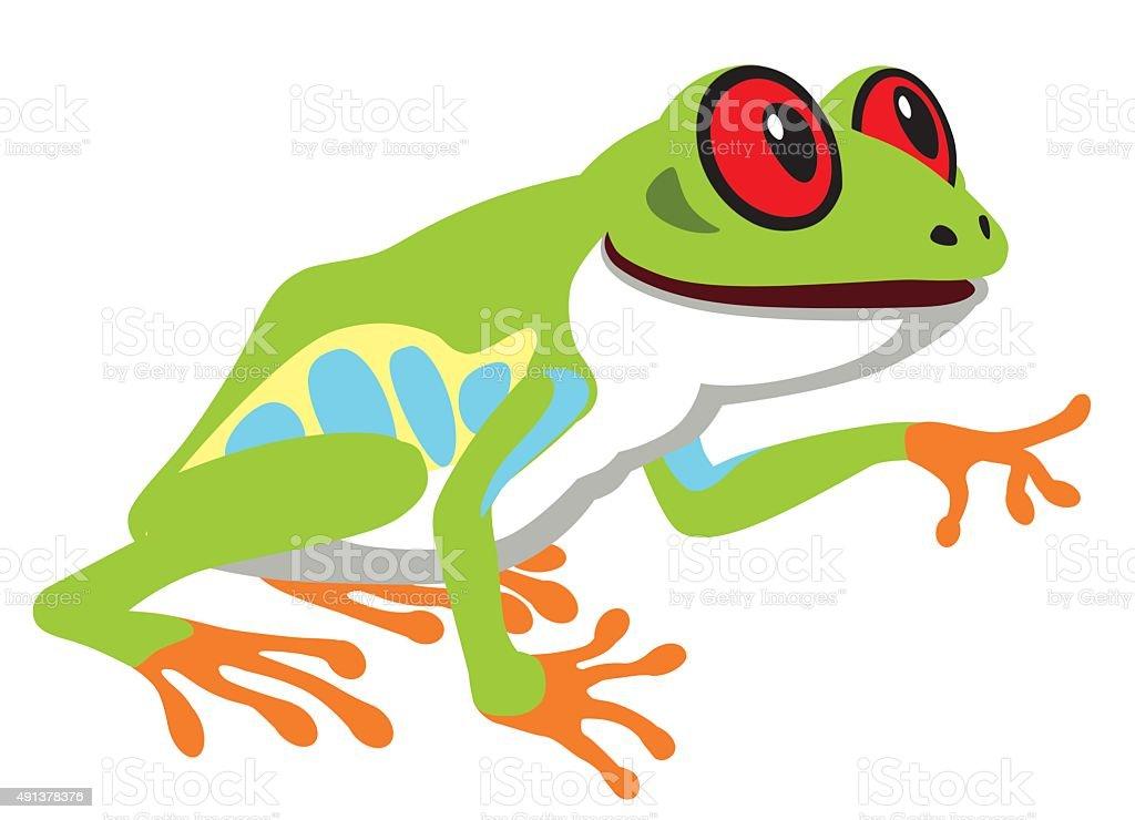 red eye tree frog vector art illustration