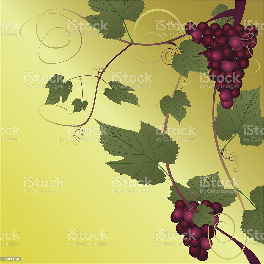 Red grape royalty-free stock vector art