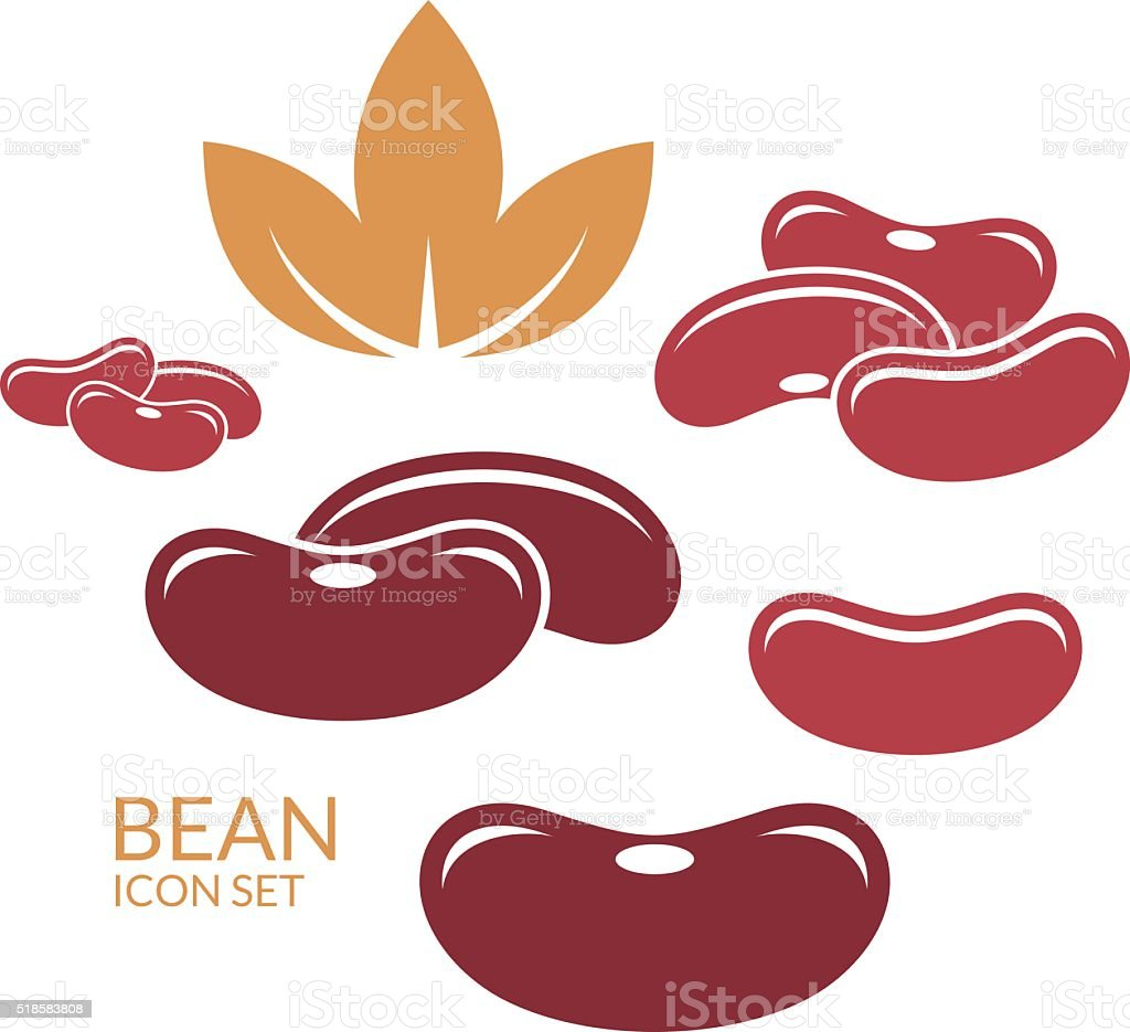 Red kidney bean vector art illustration