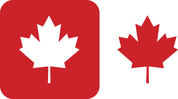 Maple Leaf Clip Art, Vector Images & Illustrations - iStock