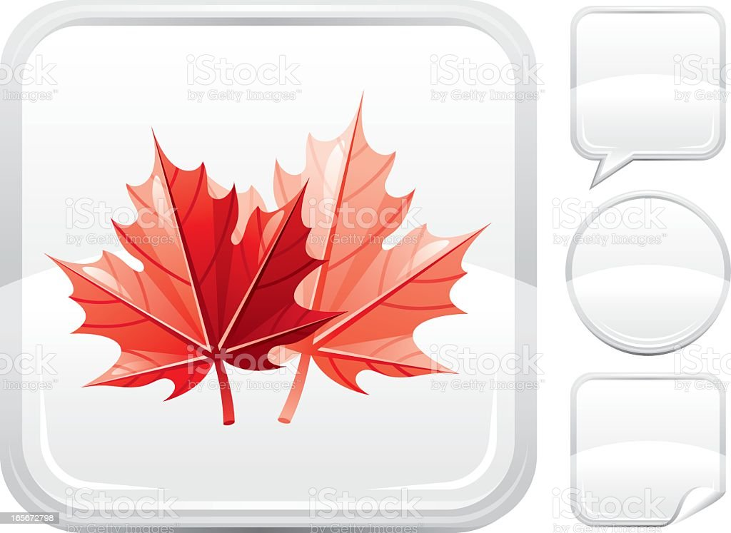 Red maple leafs icon on silver button vector art illustration