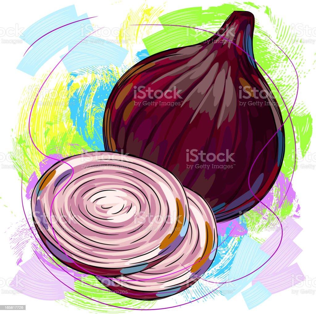 Red Onion vector art illustration