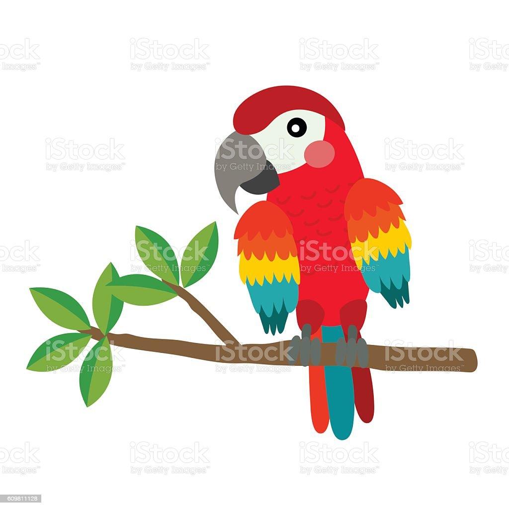 red parrot bird animal cartoon character vector illustration stock