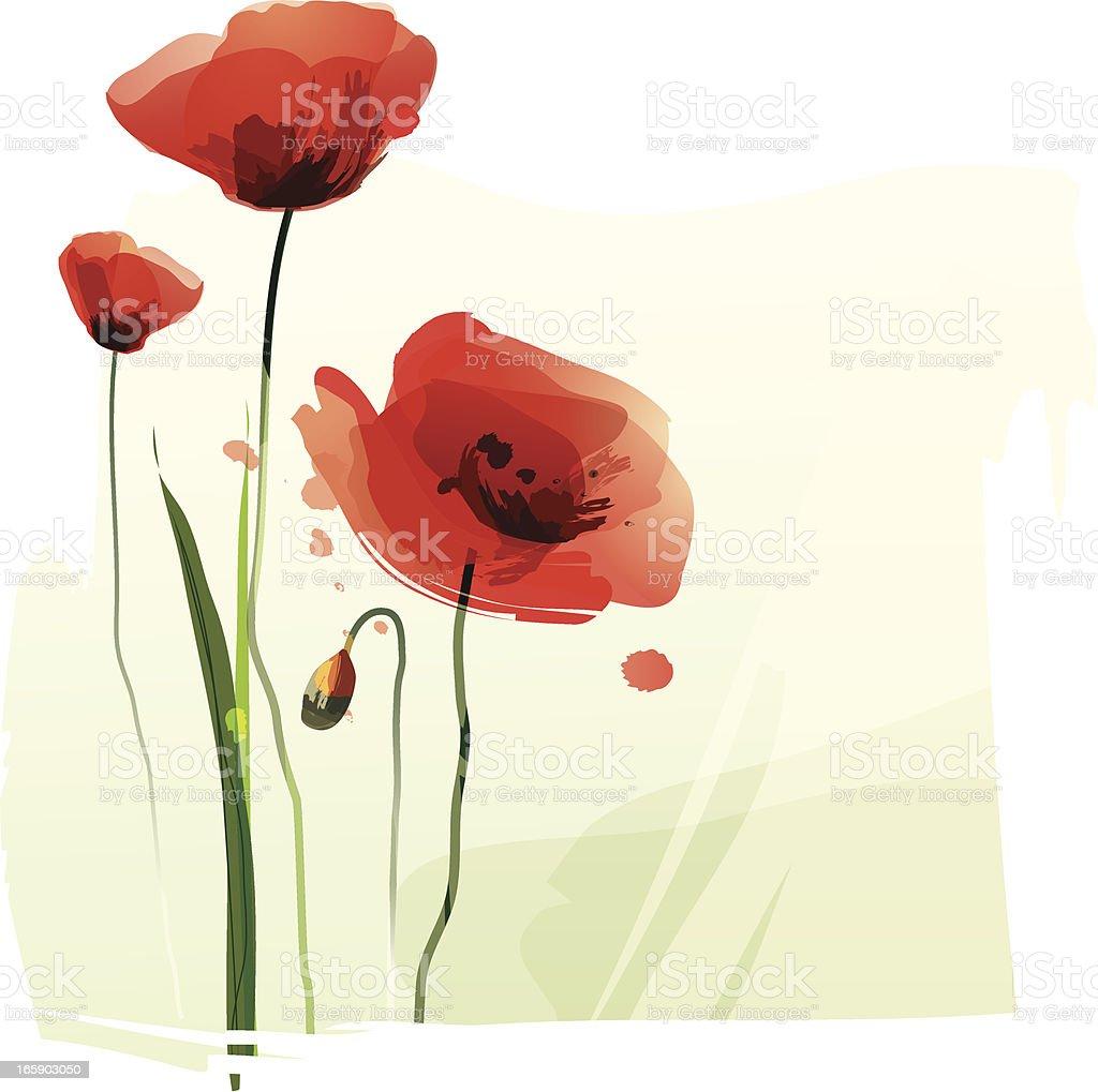 Red Poppies vector art illustration