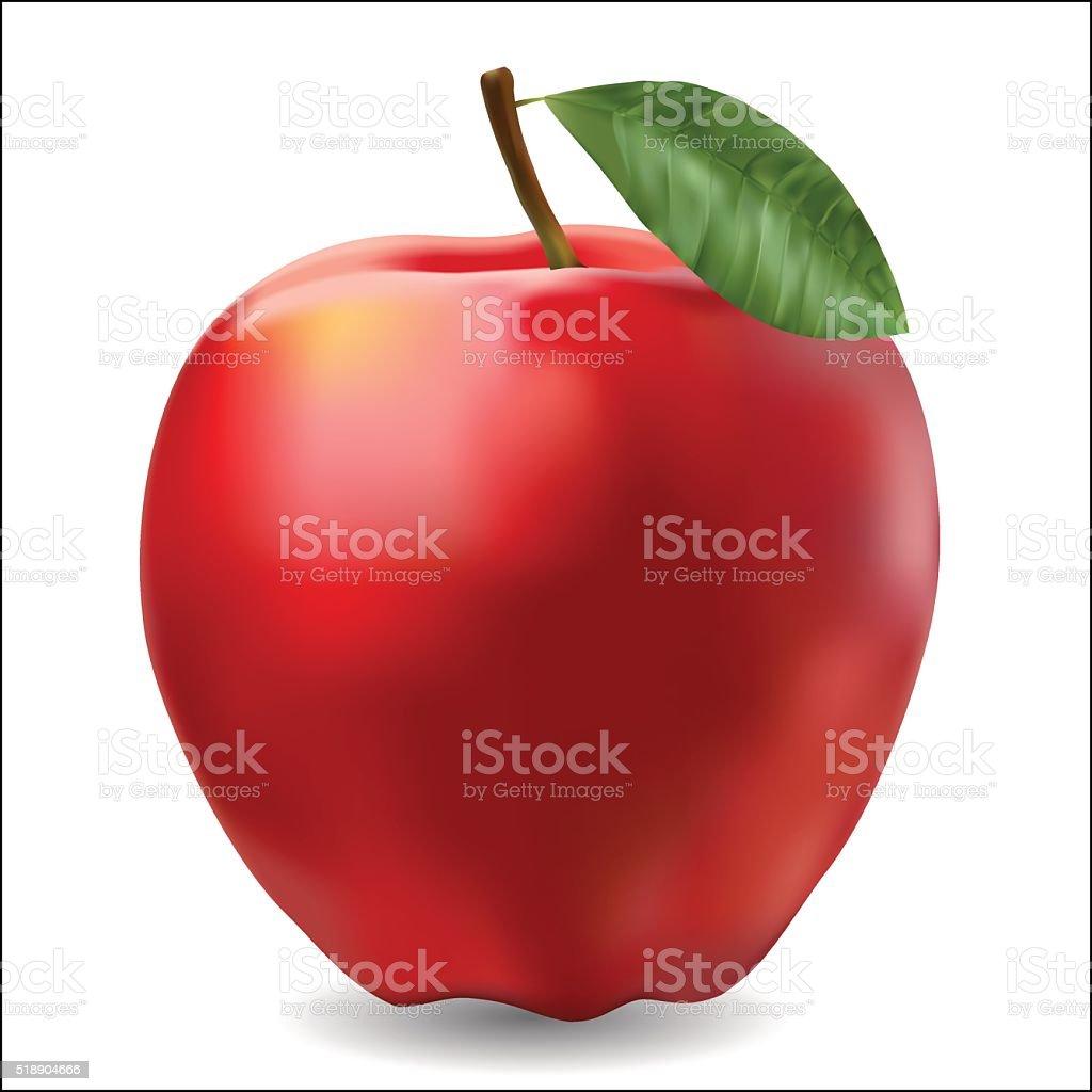 red ripe apple photorealistic vector art illustration