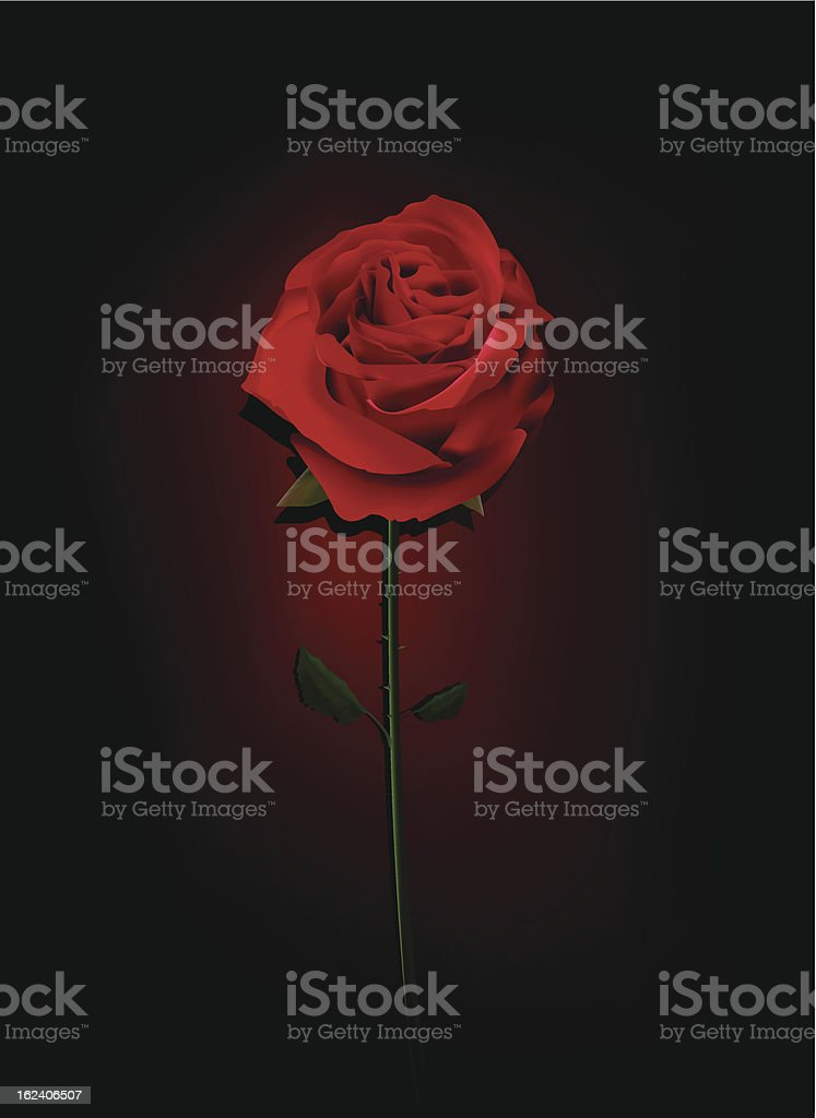 Red Rose In The Dark royalty-free stock vector art