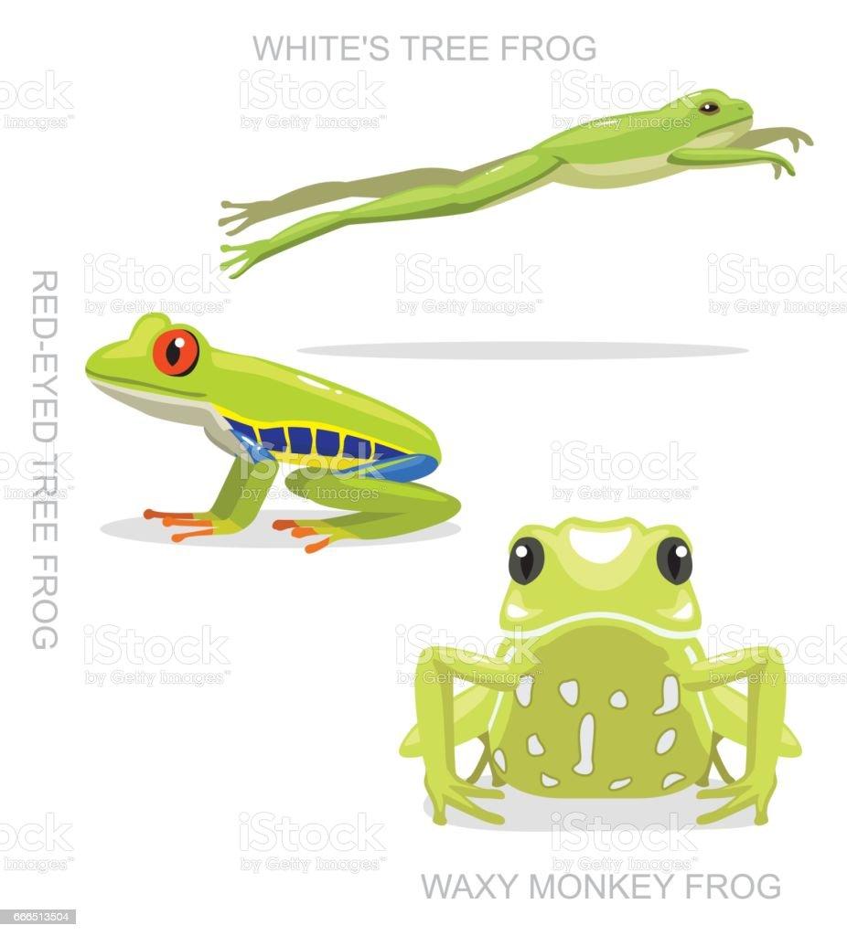 Red-Eyed Tree Frog Set Cartoon Vector Illustration vector art illustration
