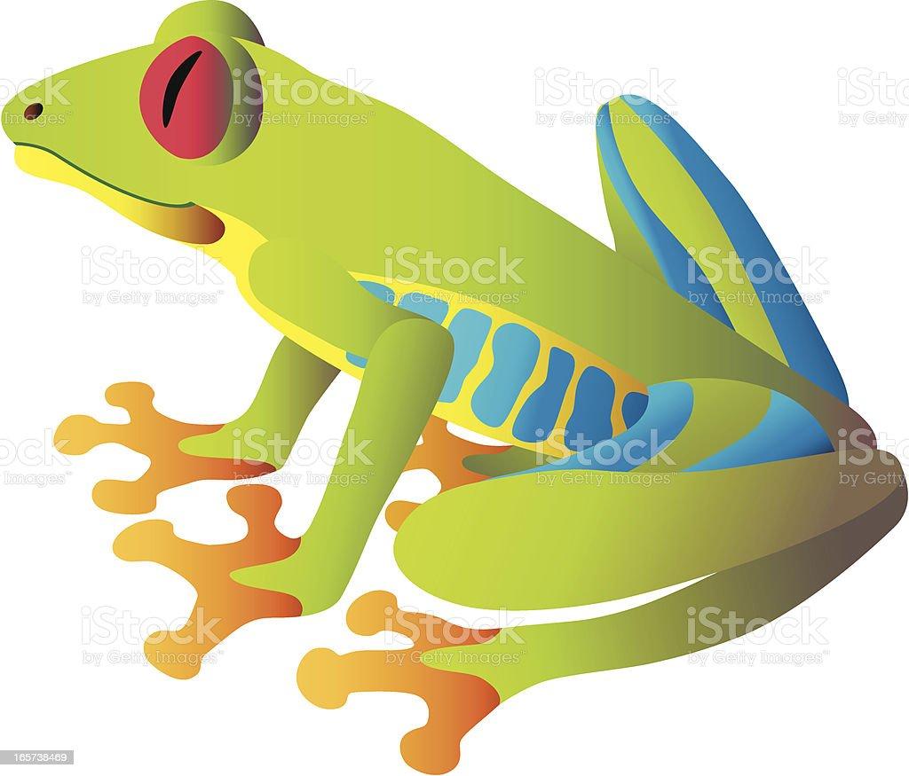 red-eyed tree frog sitting vector art illustration