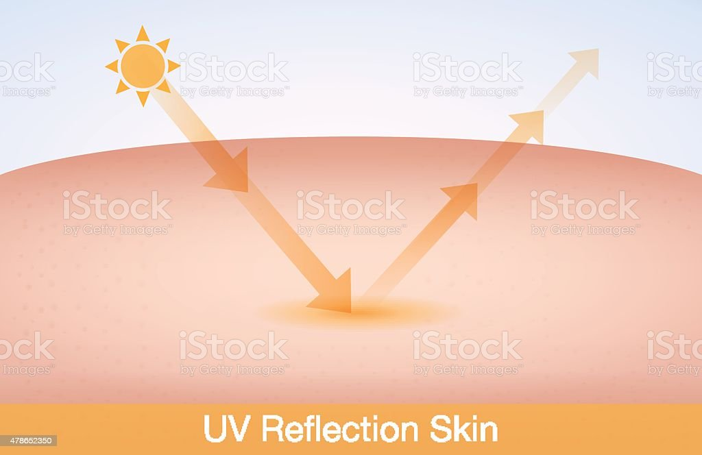 UV reflection skin vector art illustration