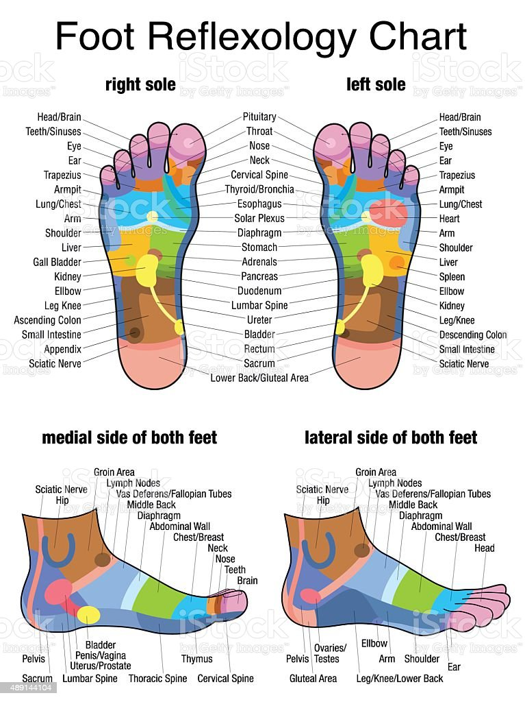 Reflexology Plantar Sole Profile Feet vector art illustration