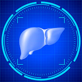 Research the liver