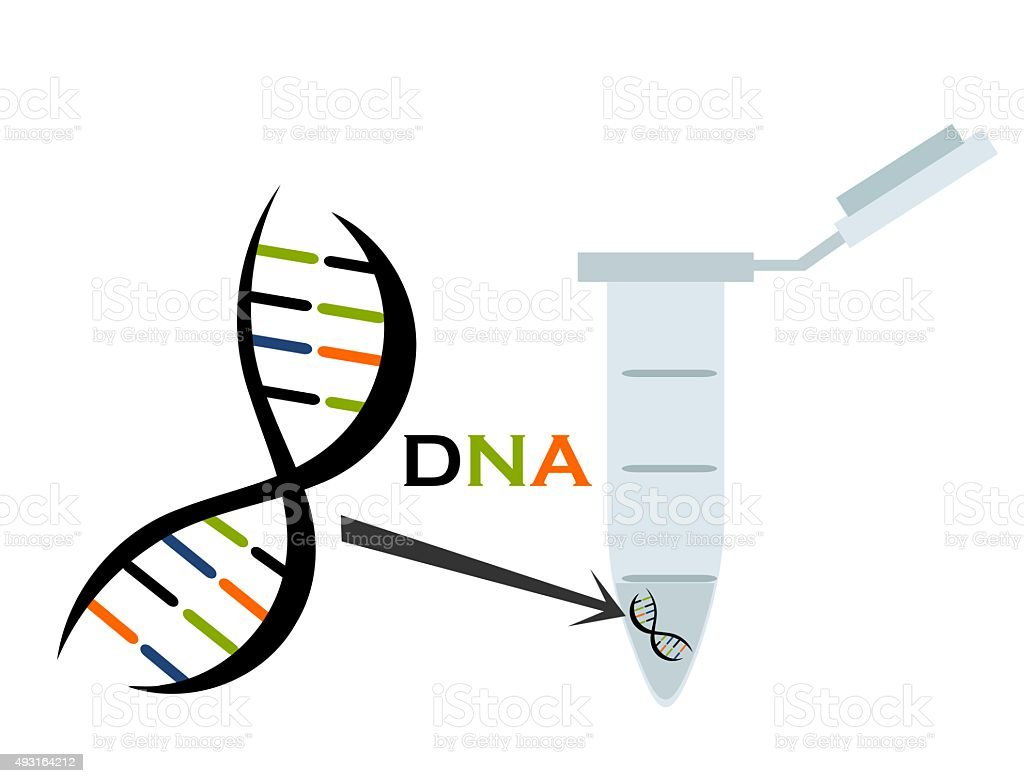 DNA research vector art illustration