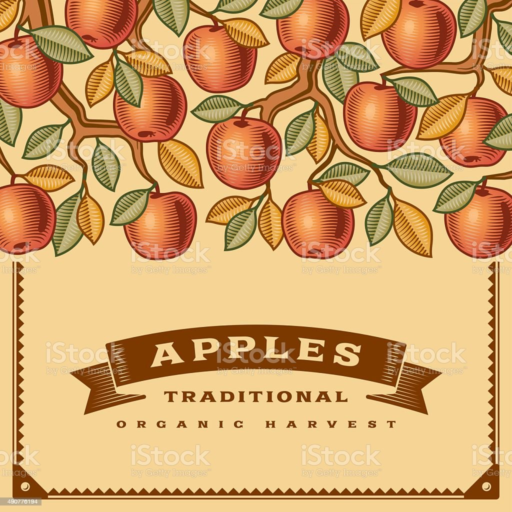 Retro apple harvest card vector art illustration