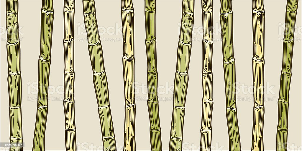 Retro Bamboo Print royalty-free stock vector art