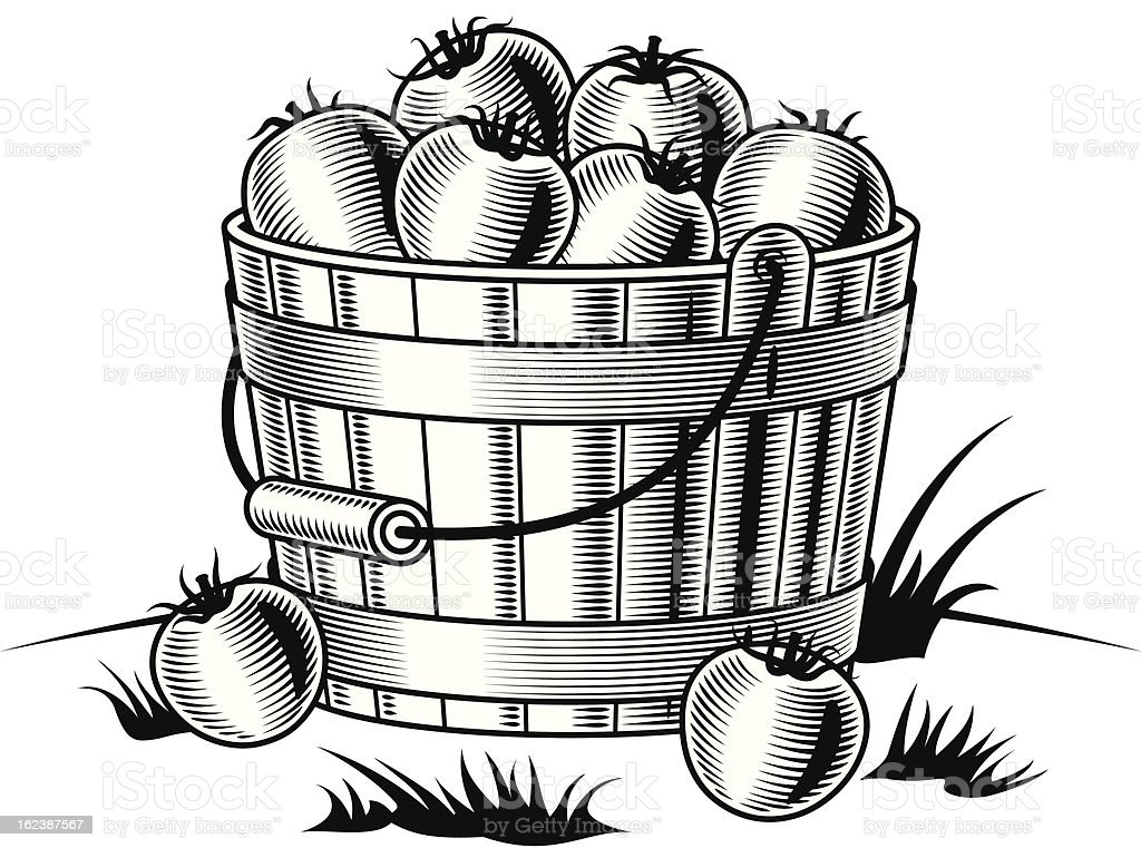Retro bucket of tomatoes black and white royalty-free stock vector art