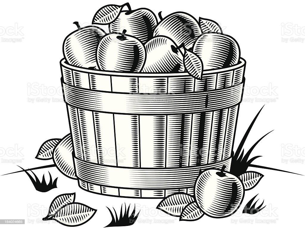 Retro bushel of apples black and white vector art illustration