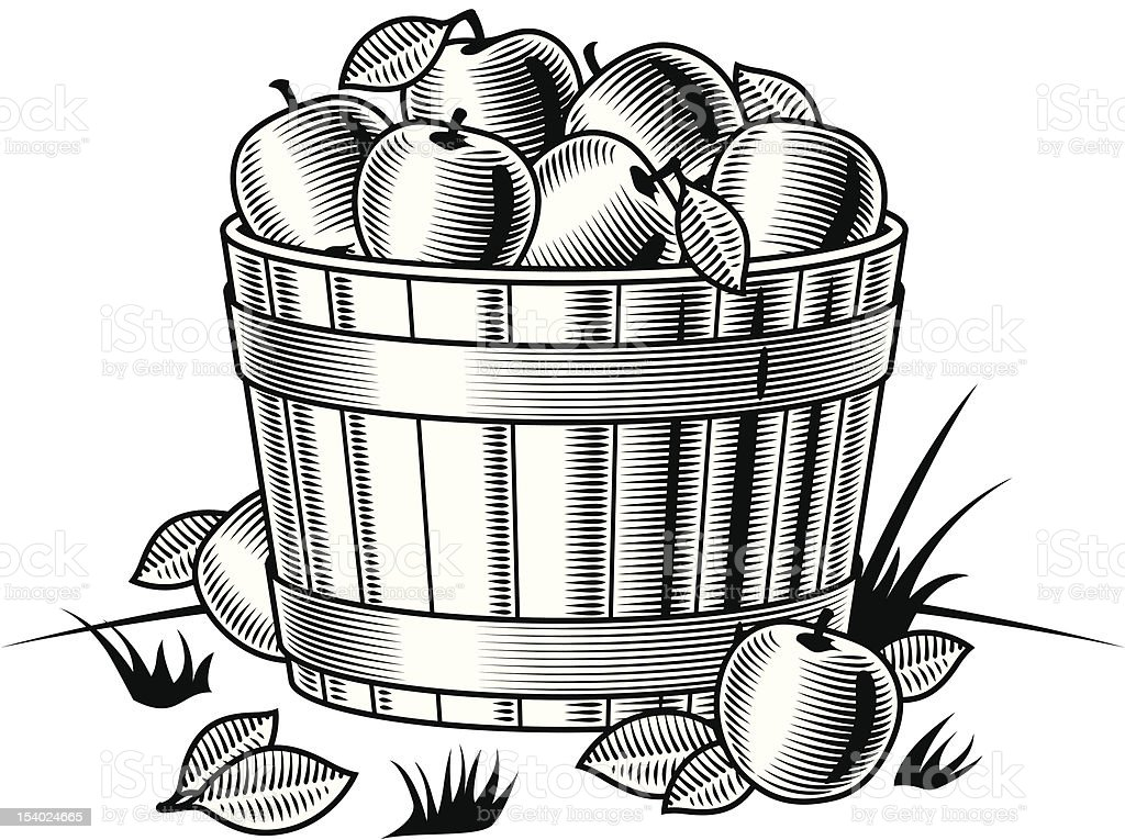 Retro bushel of apples black and white vector art illustration