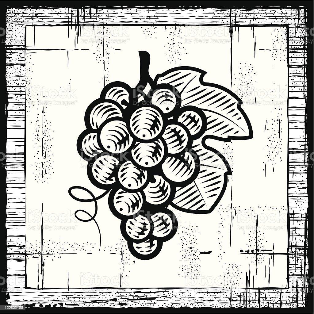 Retro grapes bunch black and white vector art illustration