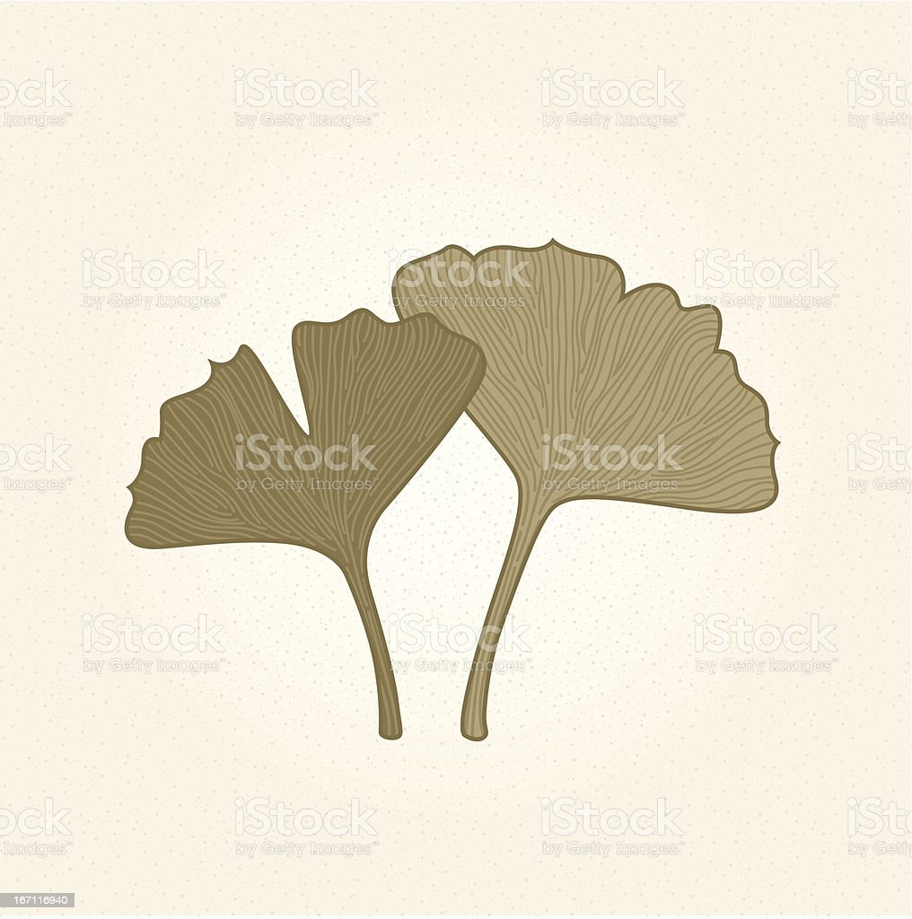 Retro hand drawn Gingko leaves isolated on brown background royalty-free stock vector art