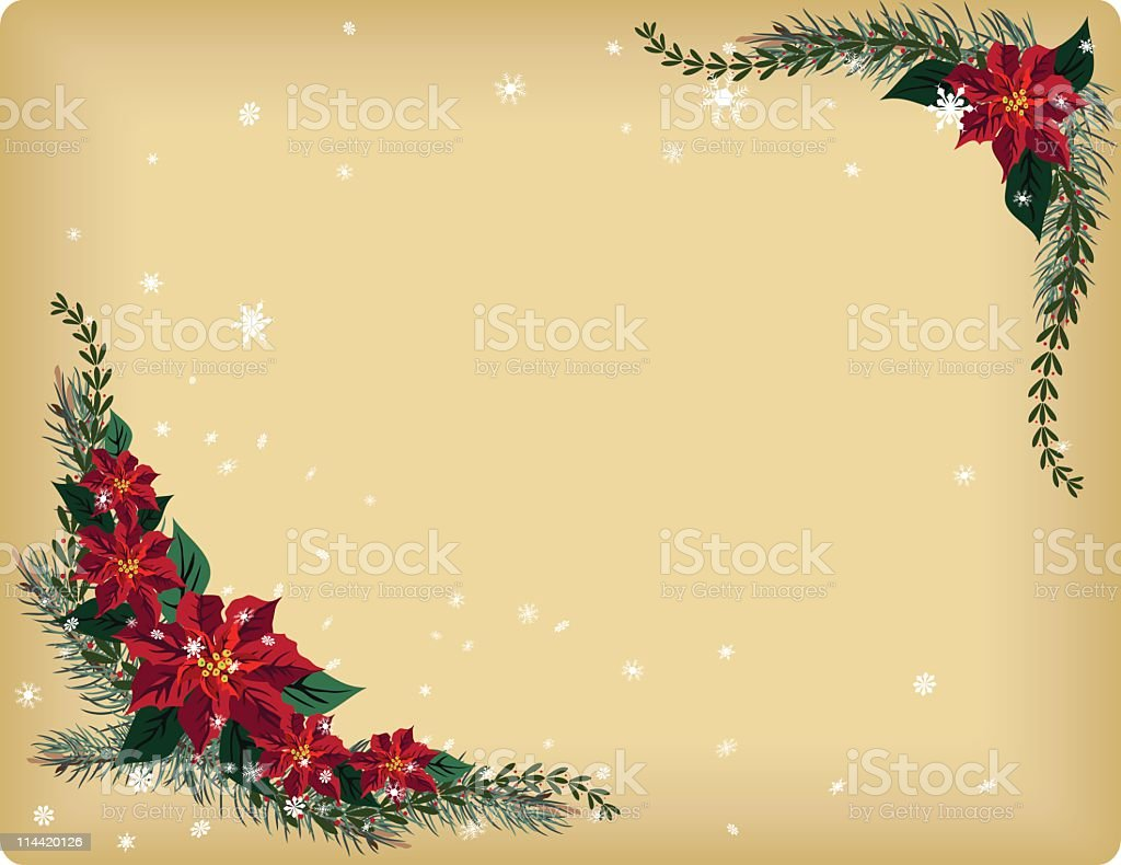 Retro Poinsettia Flowers on Evergreen Sprigs Background Illustration royalty-free stock vector art