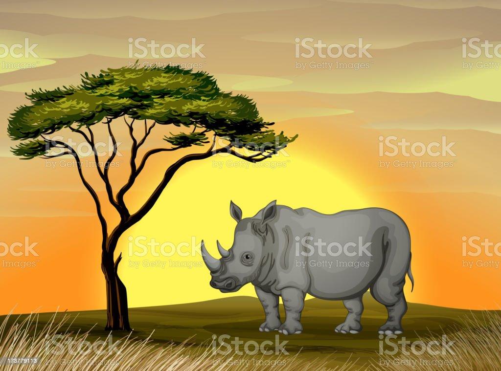 Rhinoceros under a tree royalty-free stock vector art