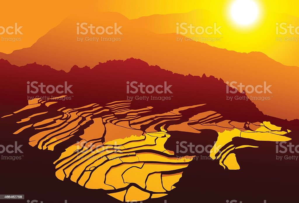 Rice Terraces, South East Asia vector art illustration