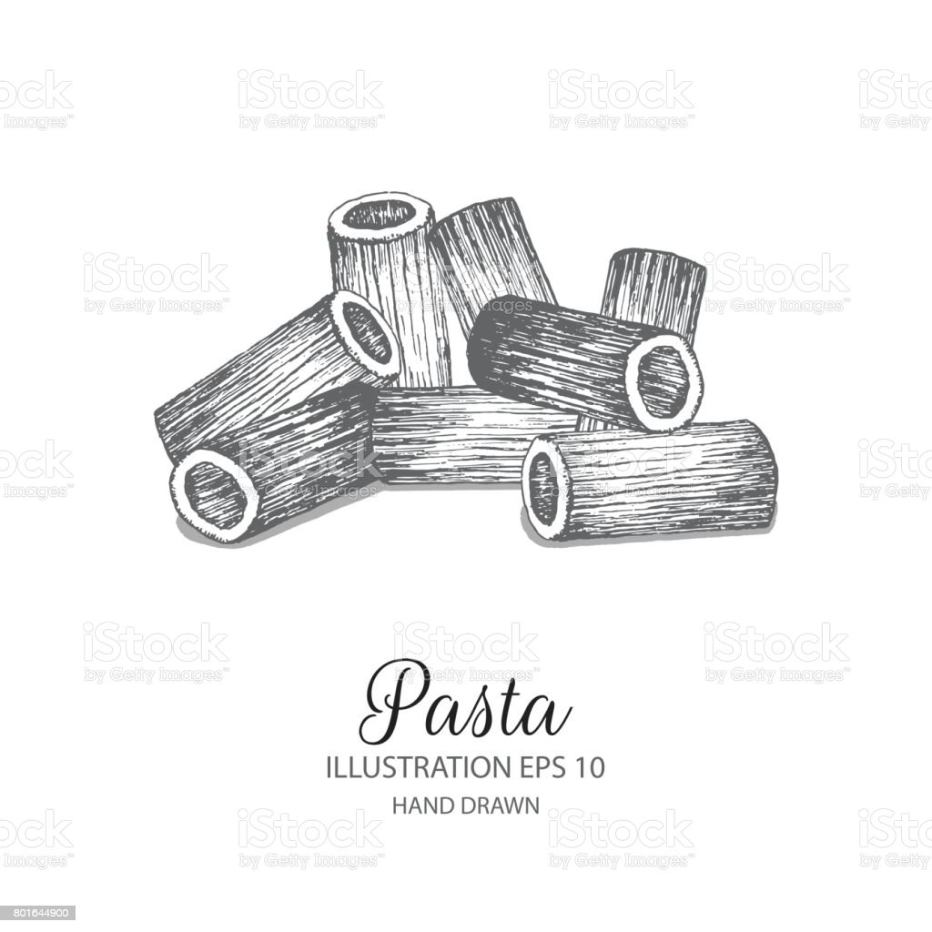 Rigatoni Pasta hand drawn illustration by ink and pen sketch. vector art illustration