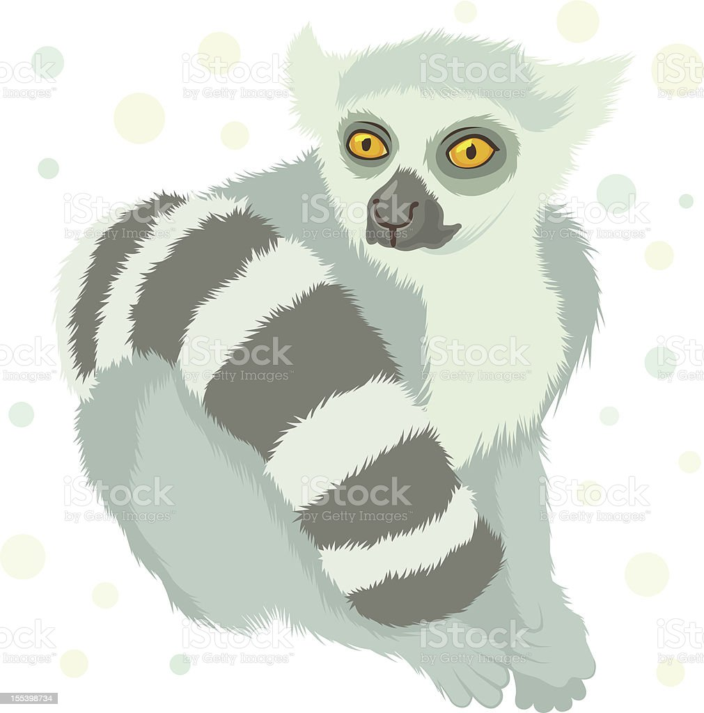 ring tailed lemur vector art illustration