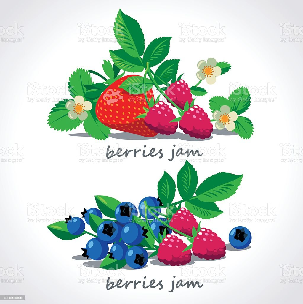 Ripe berries and flowers vector set. vector art illustration