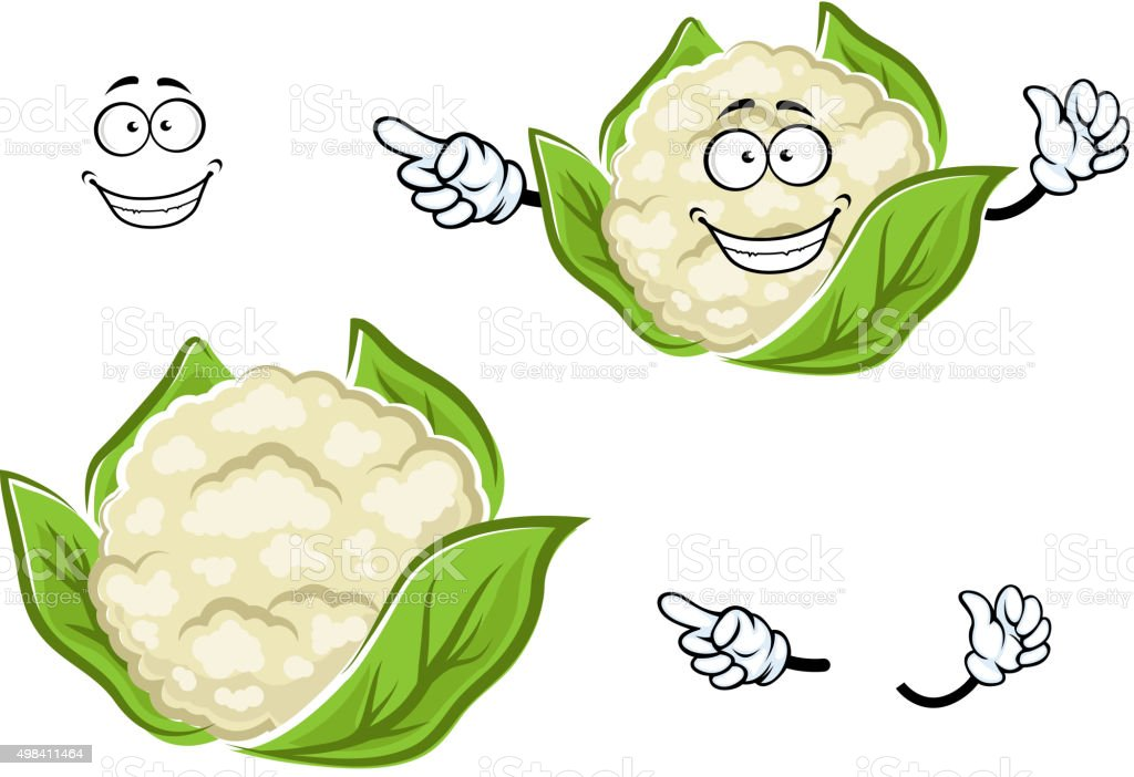 Ripe cartoon cauliflower vegetable with leaves vector art illustration