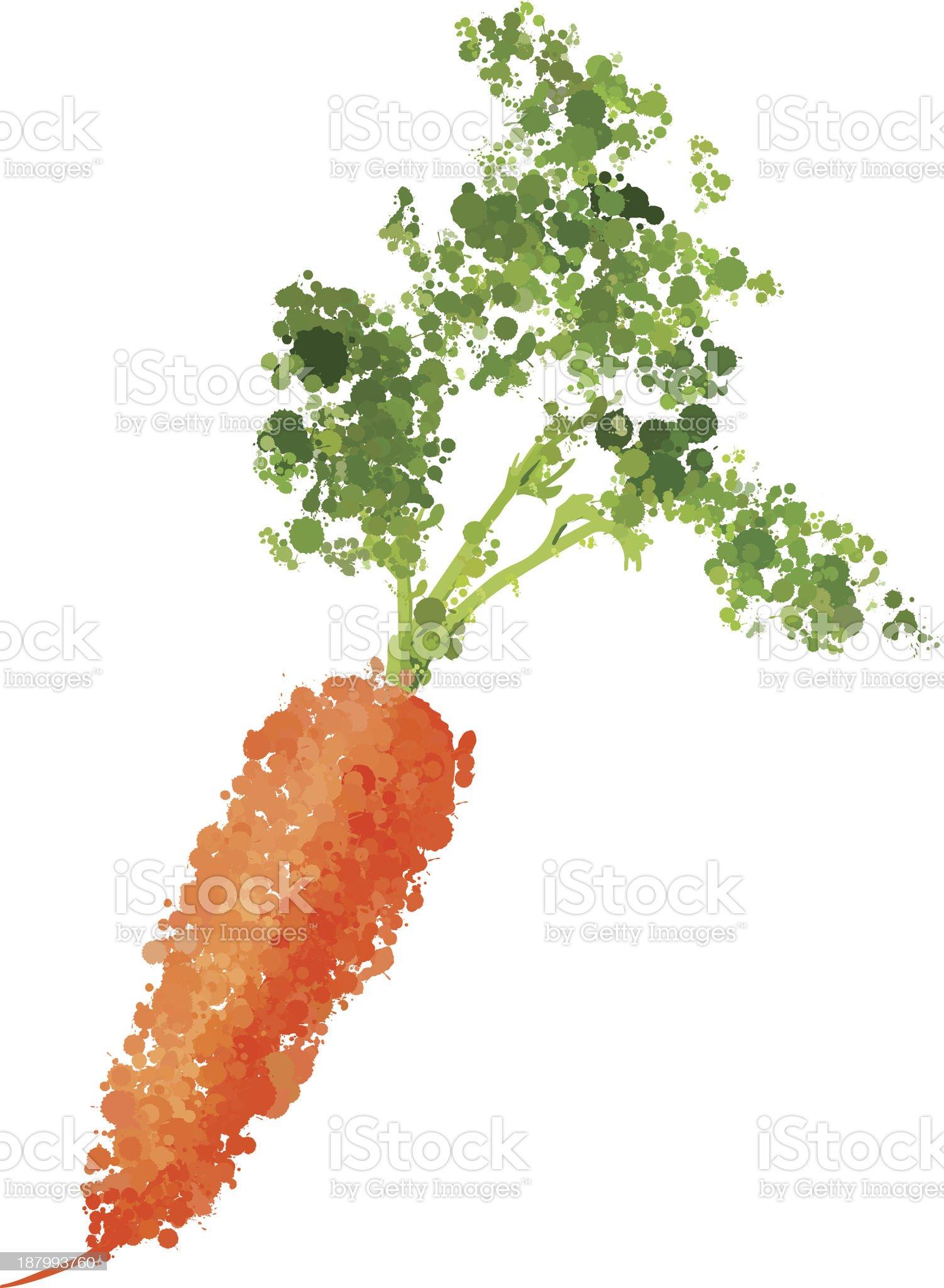 Ripe fresh carrots vector illustration of blots royalty-free stock vector art