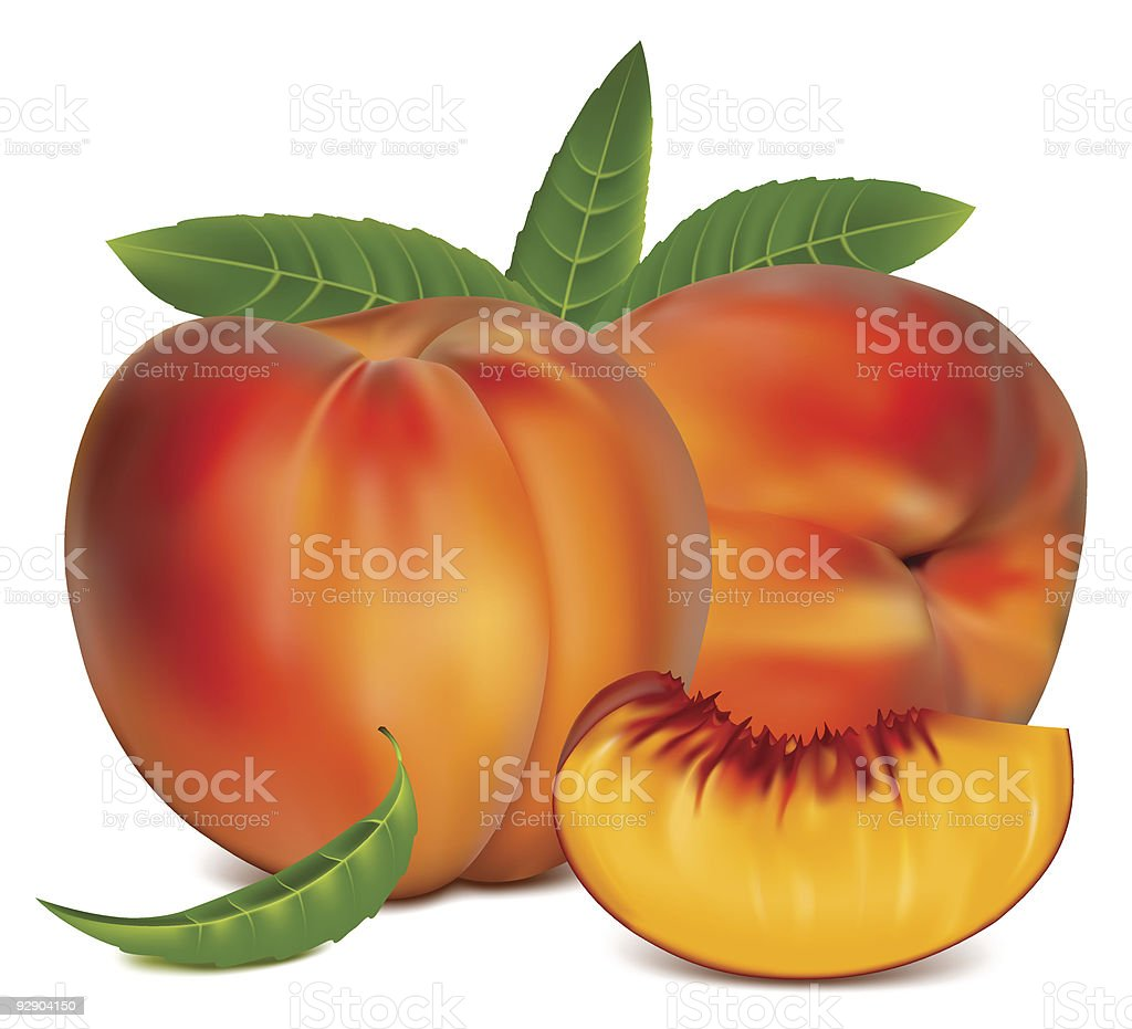 Ripe peach fruit with green leaves. royalty-free stock vector art