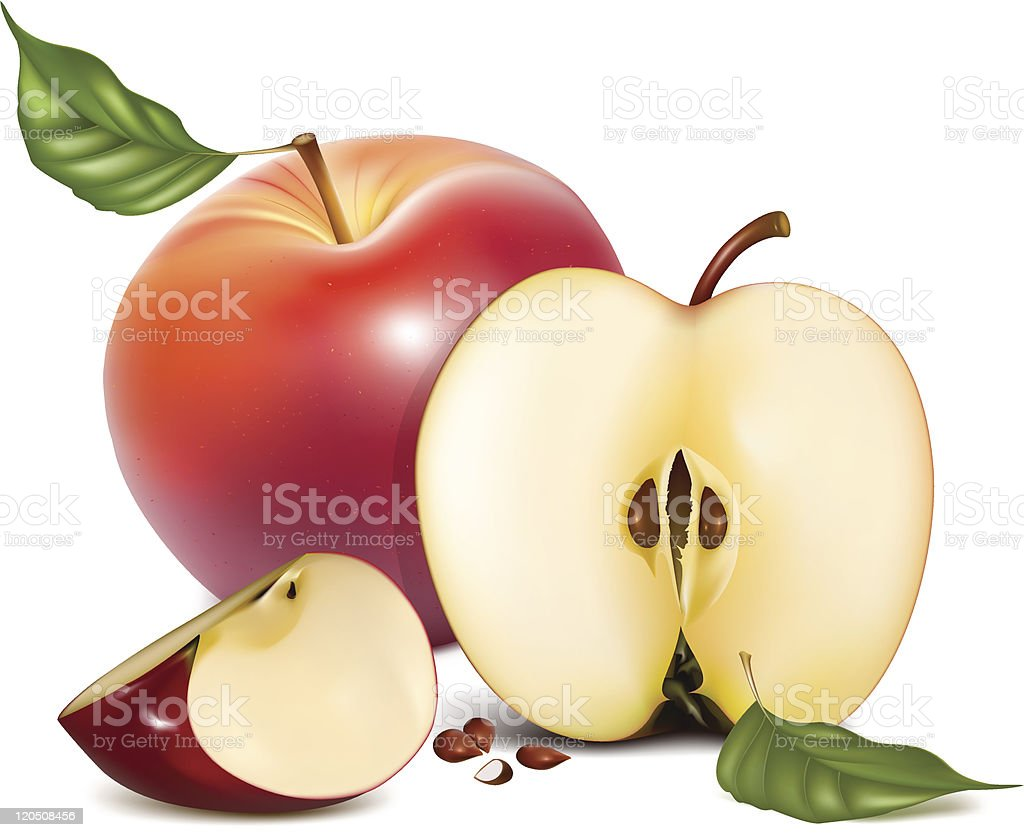 Ripe red apples with green leaves. royalty-free stock vector art