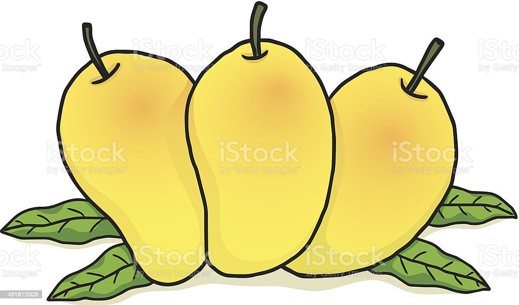 ripe yellow mango royalty-free stock vector art