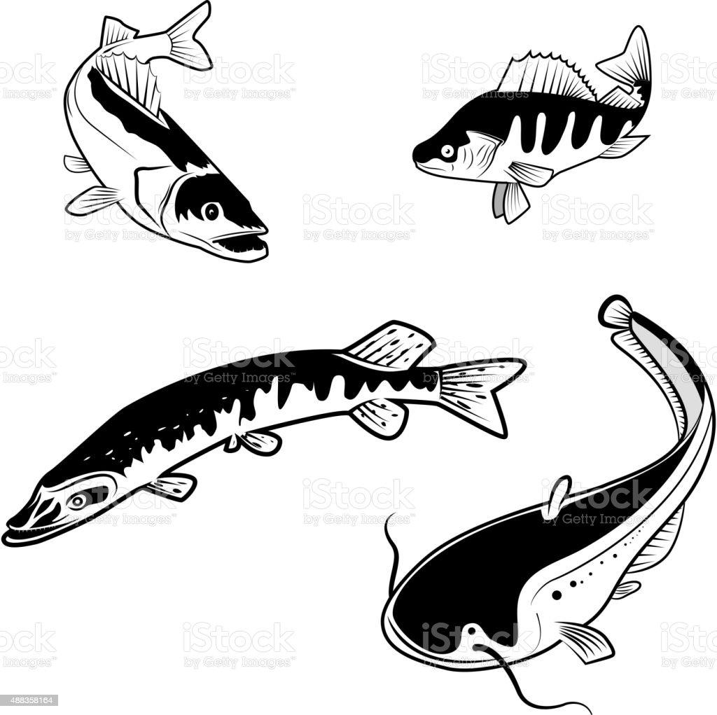 river fish vector art illustration