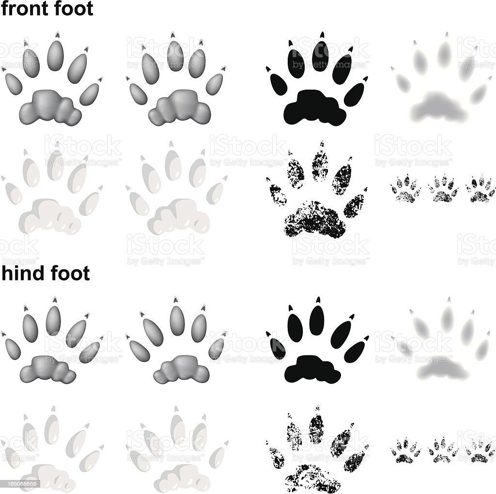 River otter footprints vector art illustration